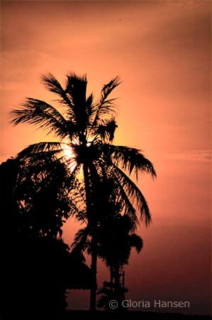 KW-sunset-7