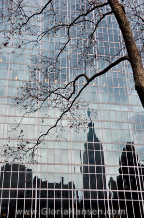 NYC-Dec-2012-reflections-2