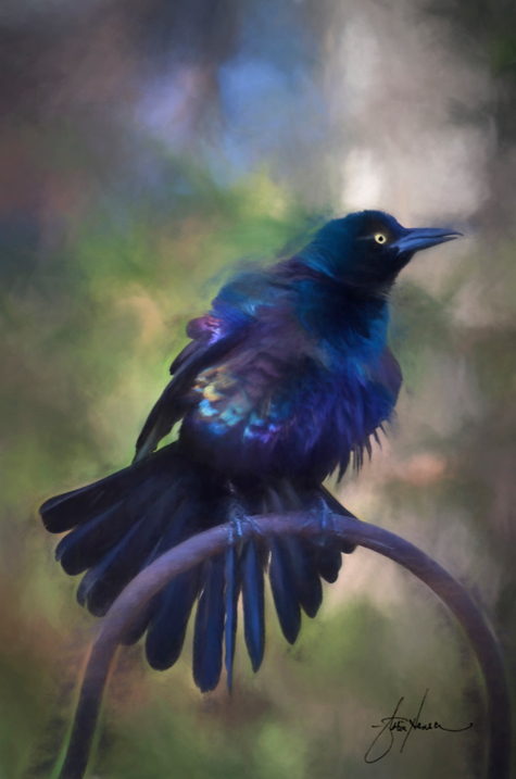 Hansen-grackle-painting