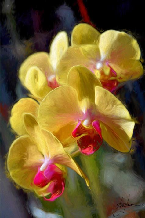 Orchid-painting-Hansen